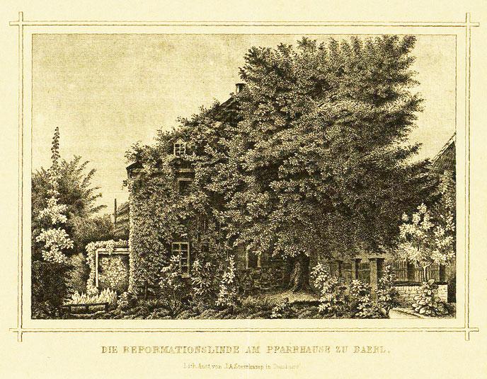 """Quelle: Ev. Kirchenarchiv Baerl; Lithographie """"Die Reformationslinde am Pfarrhaus zu Baerl"""" aus der Lithographischen Anstalt J.A. Sternkamp in Duisburg"""