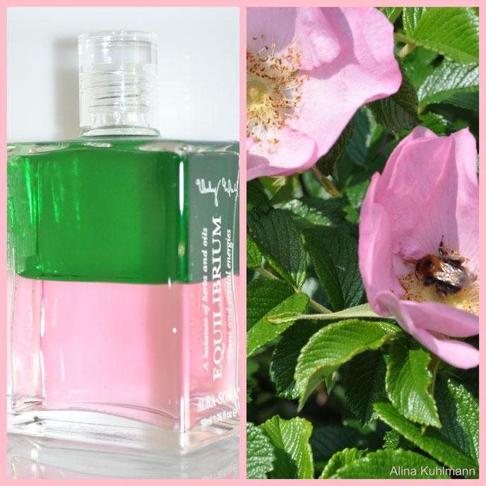 Aura-Soma B21 (grün/rosa)