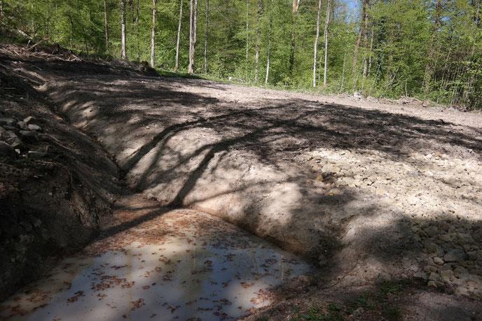 Neu angelegter mittelgroßer Baggertümpel (vorn im Bild) neben einem geplanten Wildackerstandort in Reichenberg