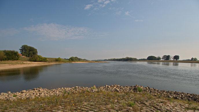 Die Elbe bei Wootz