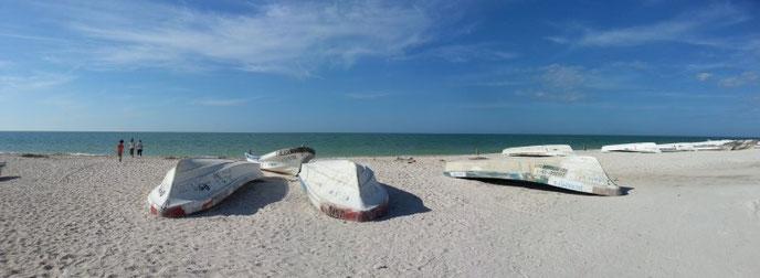 Mexique 2014 : Celestun, des barques retournées sur la plage