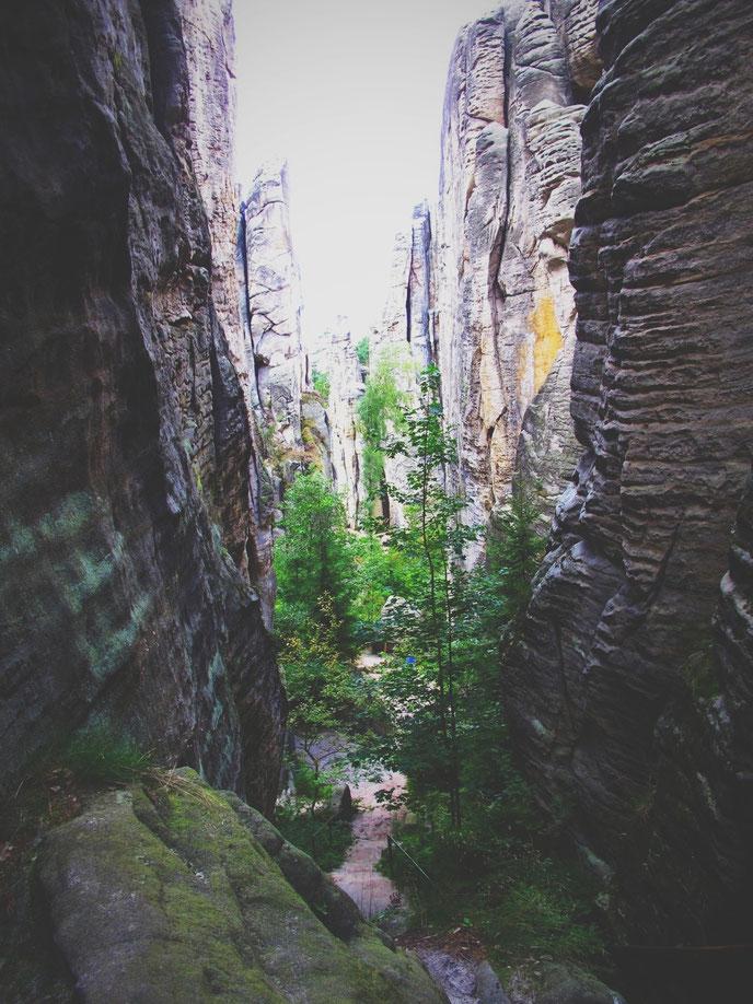 bigousteppes république tchèque prachov falaises paysage forêt
