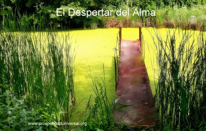 EL DESPERTAR DEL ALMA - EL DESPERTAR ESPIRITUAL- LA INTUICION - 9 SECRETOS PARA DESPERTAR EL ALMA - PROSPERIDAD UNIVERSAL