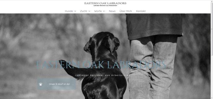 Eastern Oak Labradors, Labrador aus Arbeitslinien im DRC