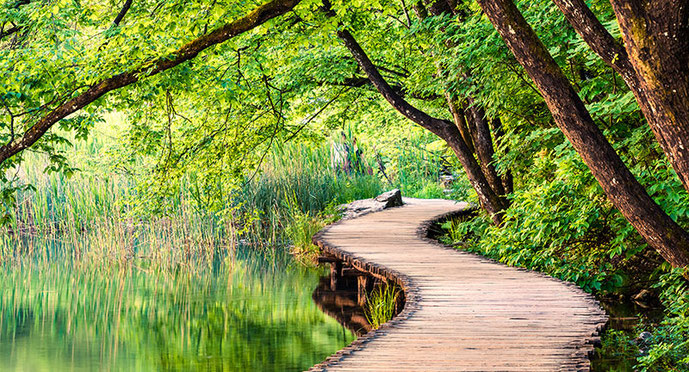 Das Foto zeigt einen See, den man über einen Holzsteg überqueren kann. Der See ist von Wald umgeben.