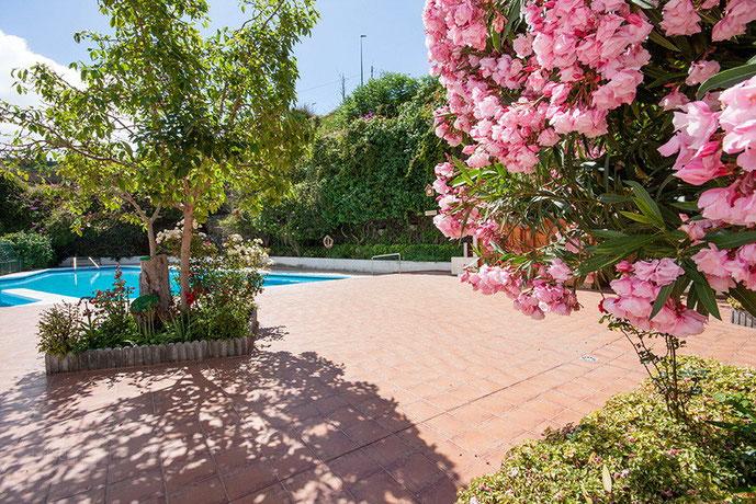 Pool mit blühenden Pflanzen, Bäume und Sträucher umrandet.