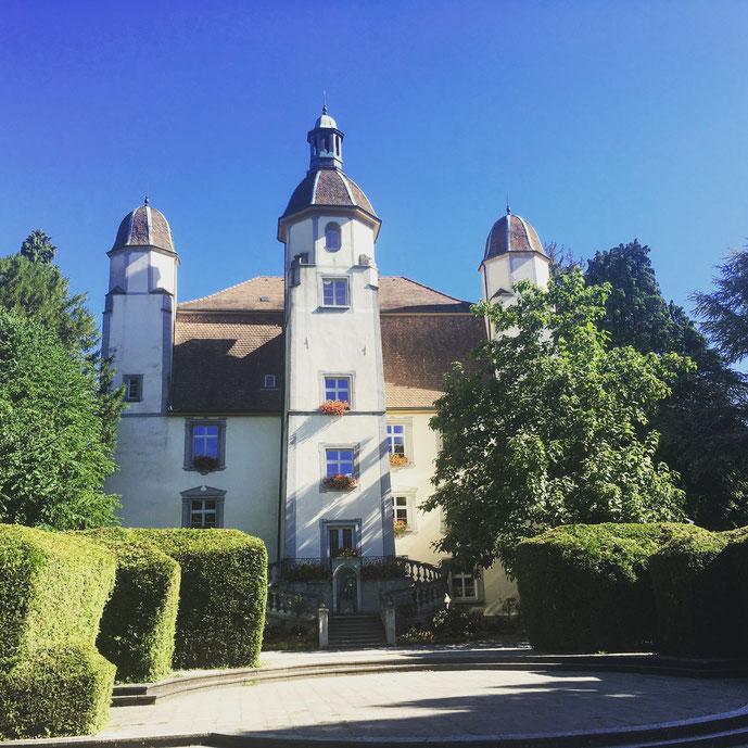 Schloss Schönau im Schlosspark
