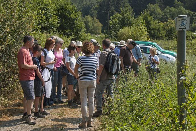 Die Teilnehmer der Schmetterlingswanderung (Foto: Rea Brinkhoff)