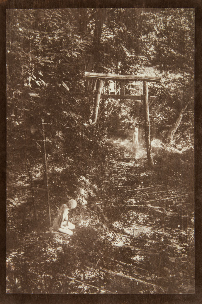無花果花影『霞に溶ける』 - PHOTO WORK  - 氷森記心 - KISHIN HIMORI -
