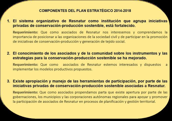 Recuadro 3. Componentes del plan estratégico.