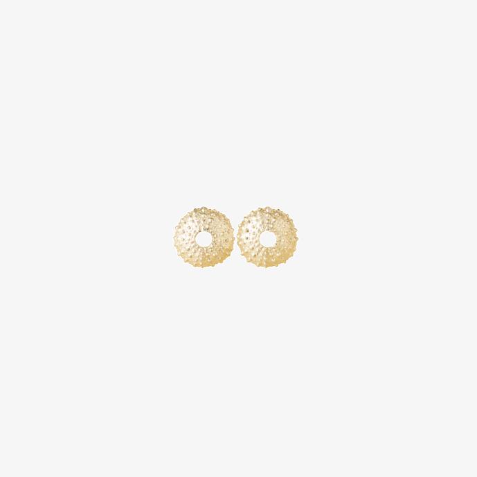 Kleine runde Seeigel Ohrstecker. 925 Sterling Silber, vergoldet. Muschelschmuck, Strandschmuck. Hochzeitsschmuck, Echtschmuck. Handgefertigt vom Goldschmied.