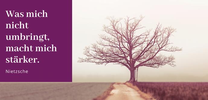 Gastbeitrag zum Thema Resilienz Schutzschild der Seele Widerstand gegen Stress stärken #Blog #Resilienz #Schutz #Stress