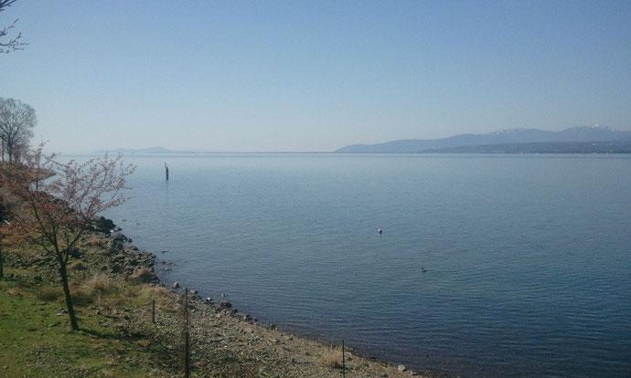 滋賀県琵琶湖のほとりの施設様に中古コンテナ12ft紺色を納品