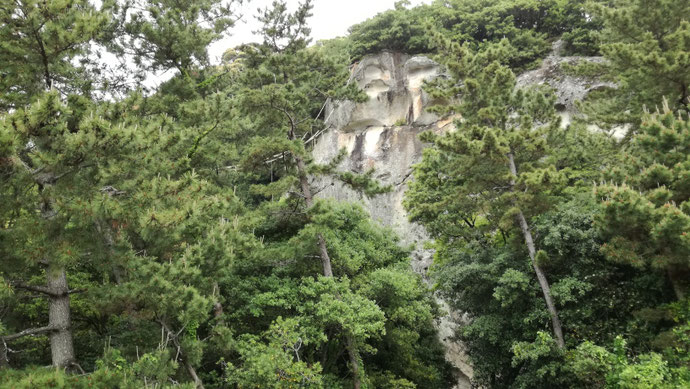 石川県白山市 中古コンテナ20ftシルバー塗装改納品