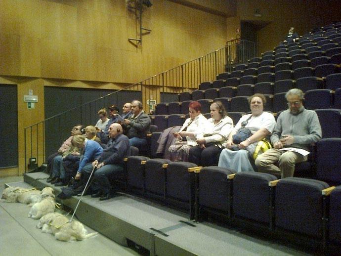 Les spectateurs suivant l'audiodescription de la pièce et leurs chiens tranquillement installés au 1er rang de la salle.