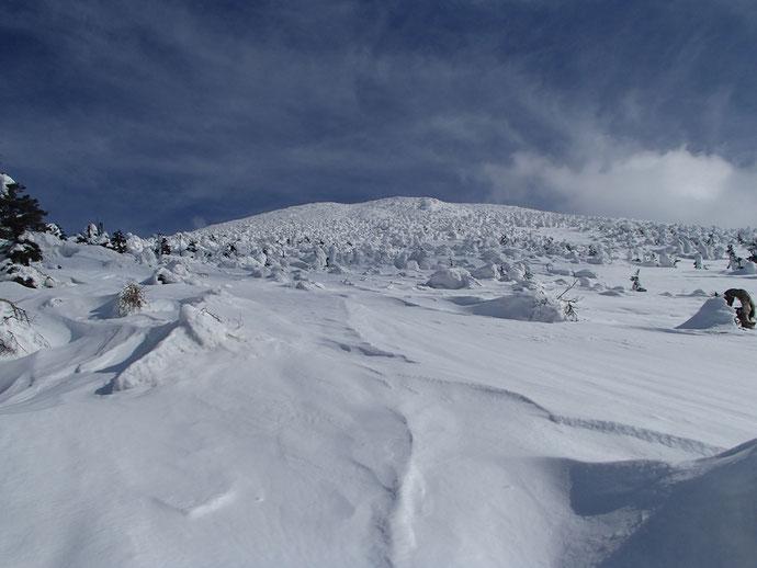 樹氷と八甲田大岳