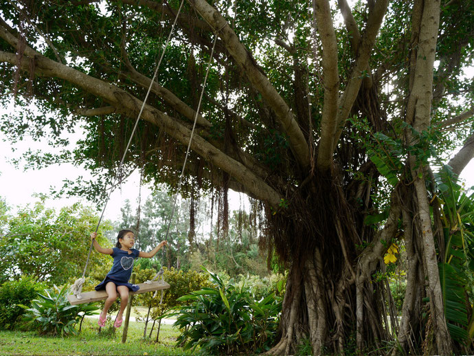 大きな木に提げられた手作りの大きなブランコでス〜ィスイ。こんな自然が近くに沢山ある
