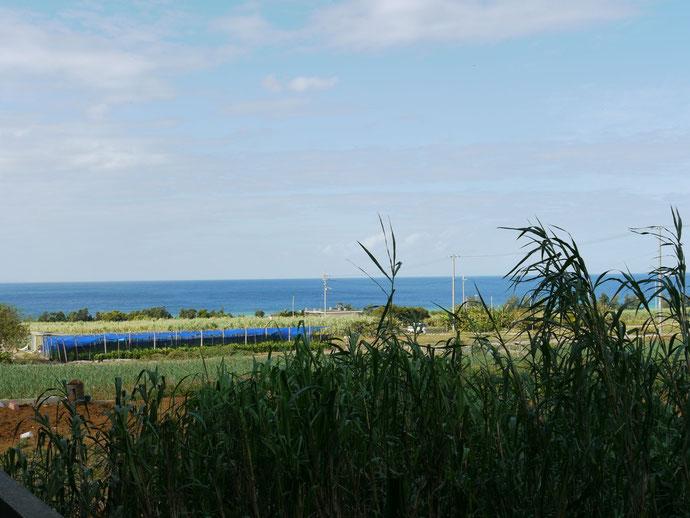 アパートのドアを開ければ、海とサトウキビ畑が見える