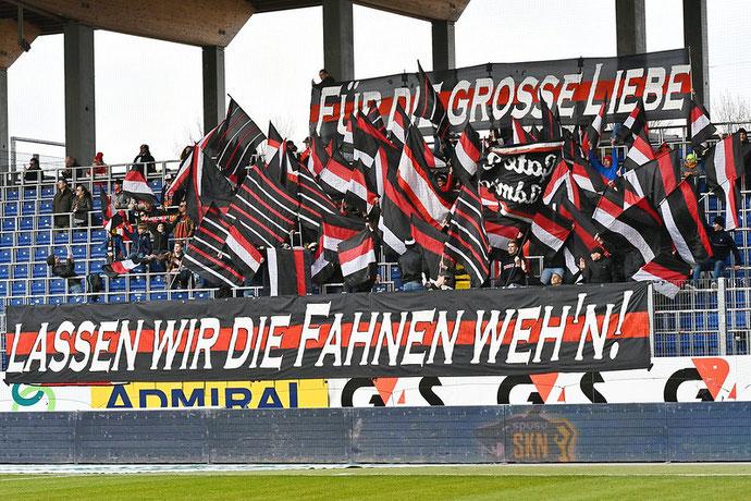 Die Jungs von Gate 2 Admira liessen sich wieder etwas spezielles für das niederösterreichische Derby einfallen und zeigten Flagge