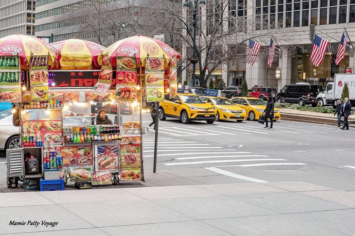 Vendeur de hot dogs, Central Park, New York