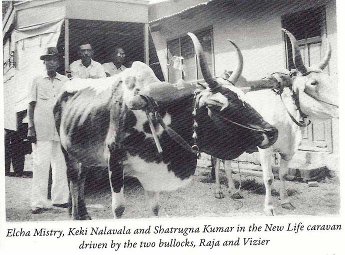 Courtesy of Meher Baba's New Life : Bhau Kalchuri - ( photo ; Lawrence Reiter )