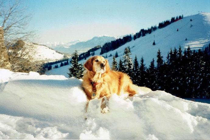 Lena im Schnee