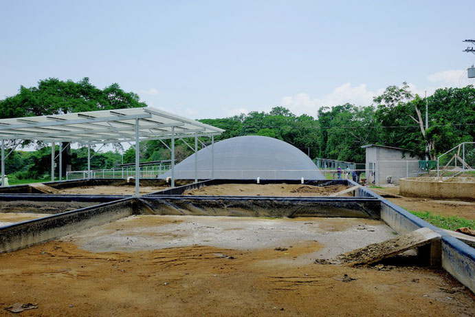 Covered lagoon digester for dairy cattle manure - sludge drying bed