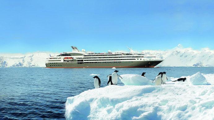 Le Boréal in der Antarktis (c) Ponant