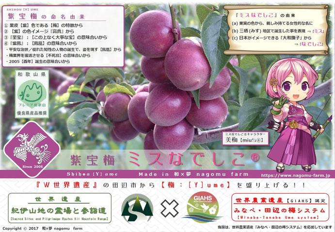 紫宝梅『ミスなでしこⓇ』とは? 和×夢 nagomu farm