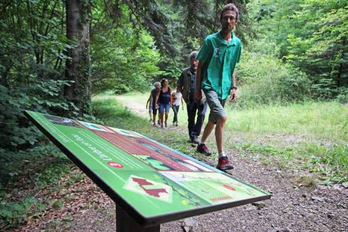 Labyrinthe Vert de Nébias - Rando Pyrénées Audoises