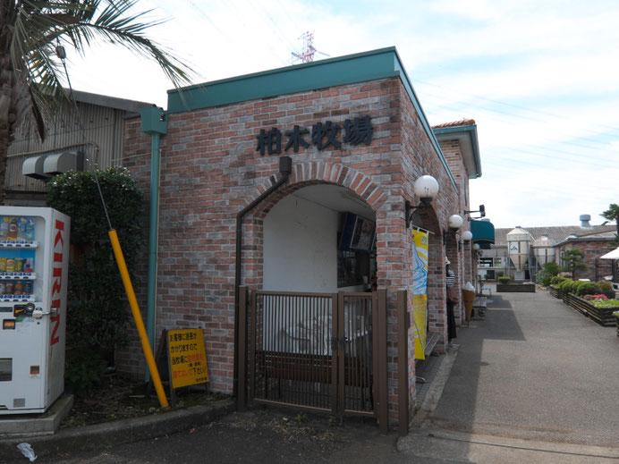 ポタグルメ - ソフトクリーム - 神奈川 -柏木牧場