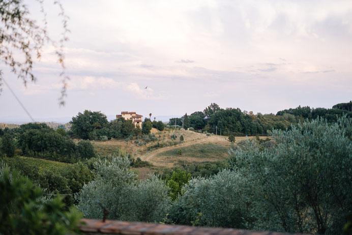 Altmark Hochzeit, Thomas Sasse, Hochzeitskleid, Hochzeitsfotograf Magdeburg, Stendal, Roexe, Tangermuende, Schlosshotel