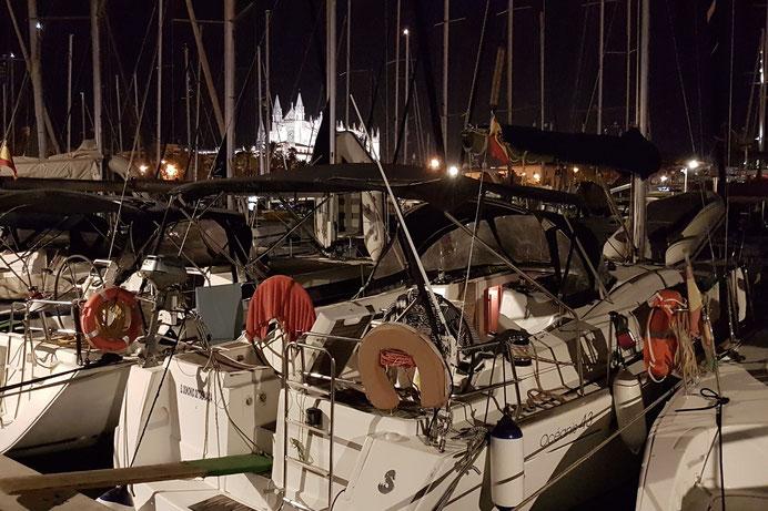 PROFICIENT | HOZ Hub Mallorca | Balearentörns | www.hoz.swiss