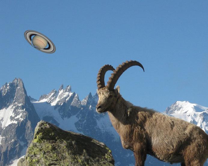 Saturn im Steinbock