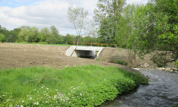 Ouvrage d'art en béton armé - pont cadre passage supérieur - béton armé
