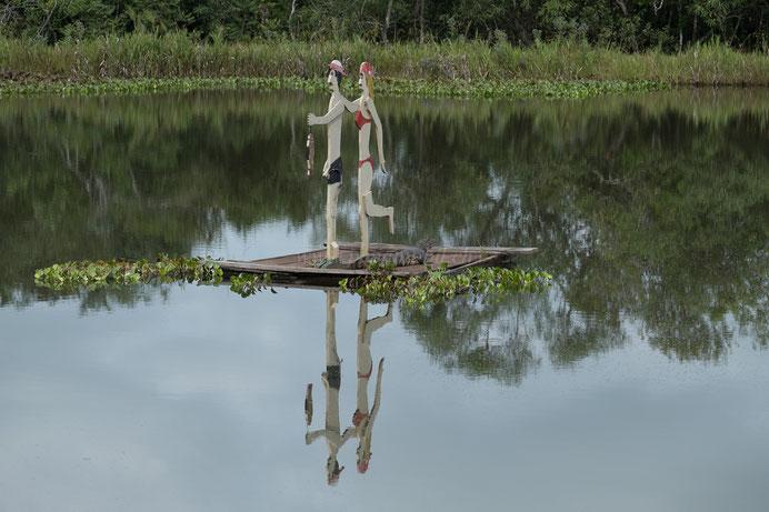 Kaiman Fauna Paraguay