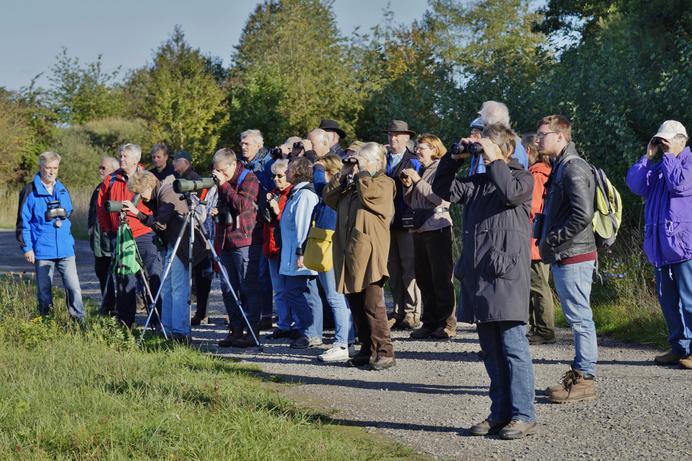 Aufmerksame Beobachter (Fotos: Gerhard Kleinschrod)