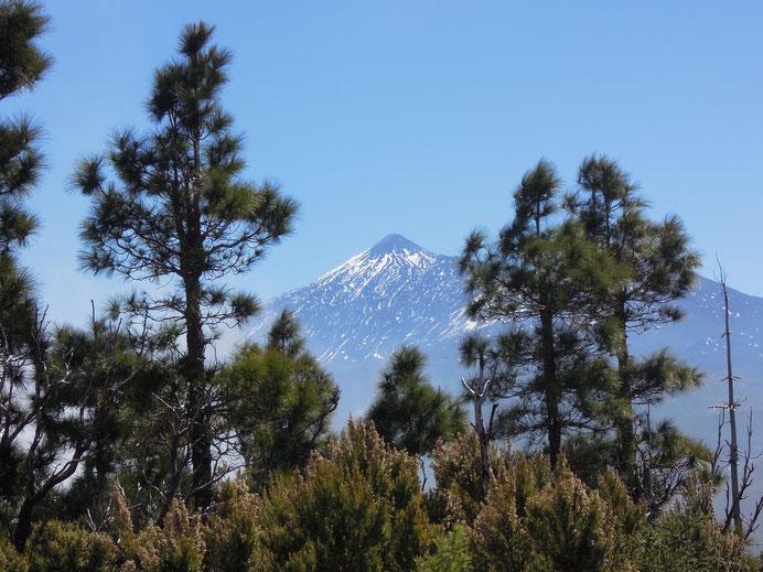 Immer im Blick: der 3760 m hohe Teide