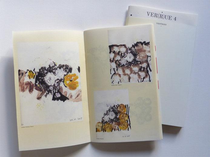 JC FAREY série Lichens in Ver(r)ue n°4