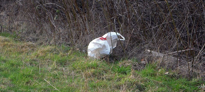 Tüten und Taschen landen leider oft auch in der Landschaft