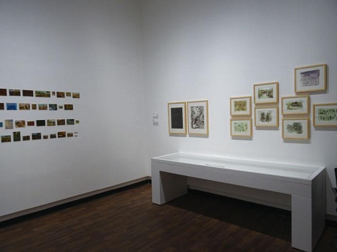 陳述書に擁護材料として用いた、シャルジャ・ビエンナーレ14 の アンタリクサ《Co-Prosperity》の展示風景(2019 年)。 村田真と小澤剛らの作品を「要素」に構成された展示空間。