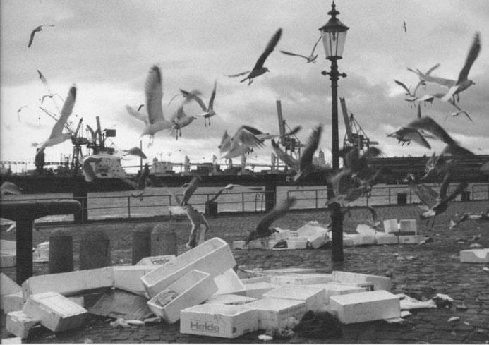 Kiezbilder - Fischmarkt1 - fotografiert von Günter Zint