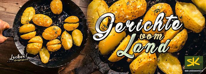 Speisekarten Design und Layout und Fotos