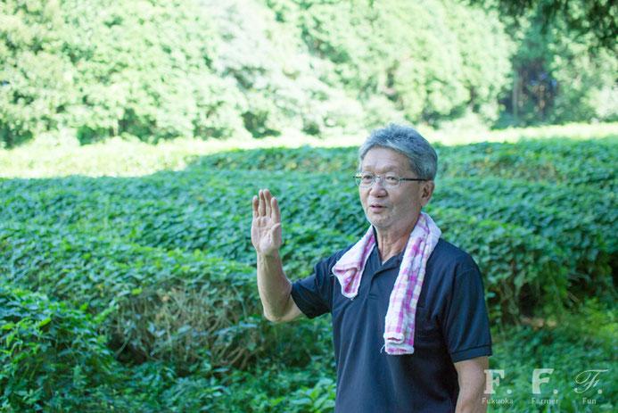 お茶畑について語る馬場雄治さん