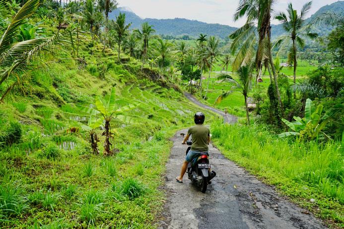 Motorroller, Reisfelder