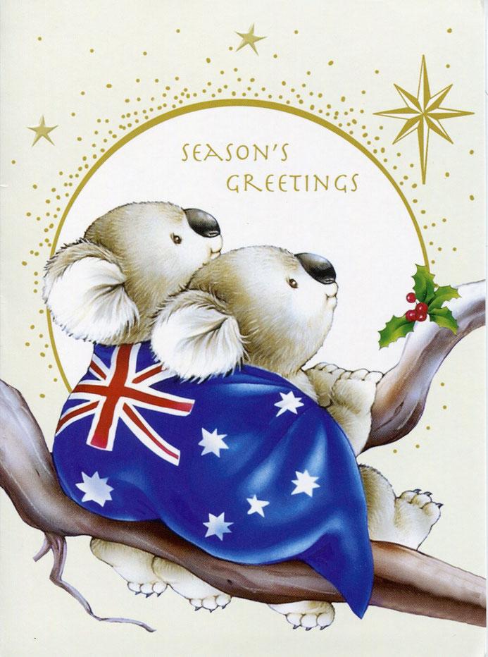 koalas - vivir en australia