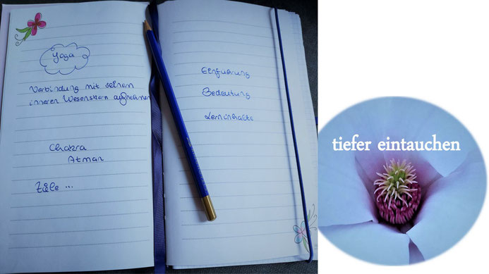 Workshops Heidelberg Auszeit nehmen und tiefer eintauchen in die Welt des Yoga Yoga Yin Yoga Rücken Yoga Yoga Nidra Eva Metz Gesundheitsweg 10er Karten 5er Karten Einzelunterricht