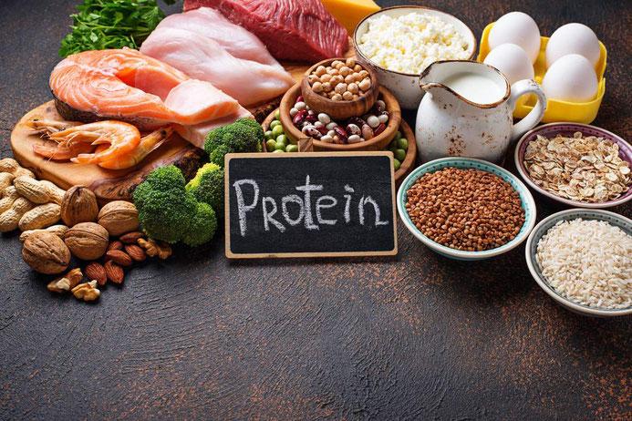 Tierische und pflanzliche Proteinquellen