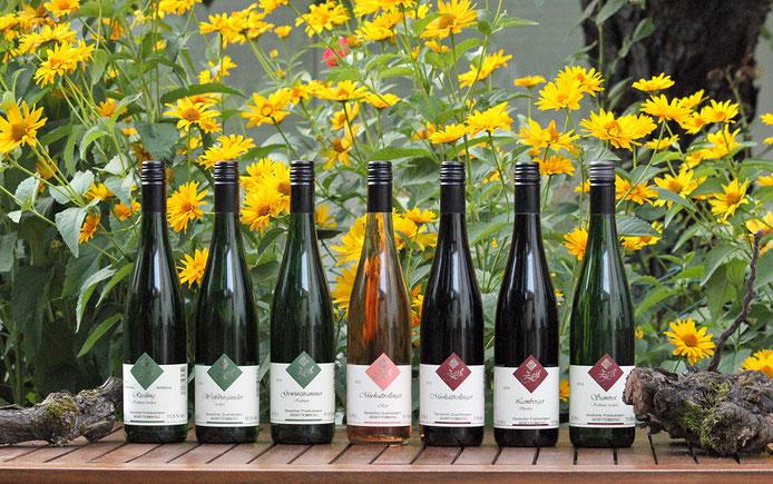 Ein Teil unseres Weinsortiments... Haben Sie schon unseren Muskattrollinger probiert? Sehr empfehlenswert!
