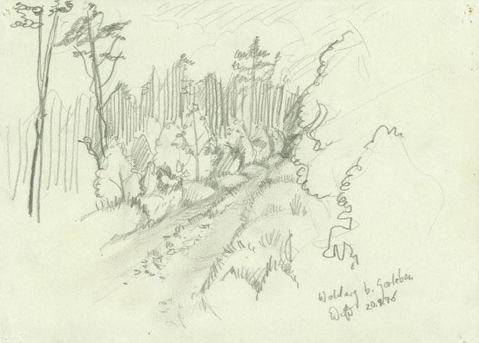 Zeichnung Blei: Waldweg bei Gorleben im Wendland Niedersachsen
